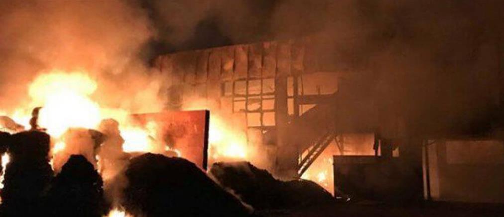 Πύρινη κόλαση σε εργοστάσιο ανακύκλωσης (βίντεο)