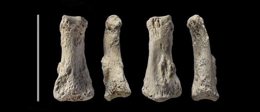 Ανακαλύφθηκε απολίθωμα Homo Sapiens ηλικίας 90.000 ετών!