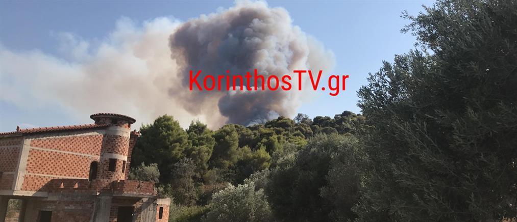 Φωτιές στην Κορινθία – Εκκένωση στο Ρυτό (εικόνες)