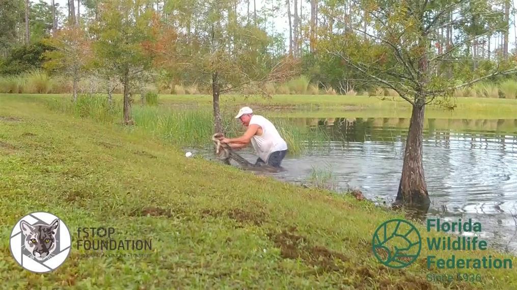 Πάλεψε με αλιγάτορα για να σώσει το σκυλάκι του