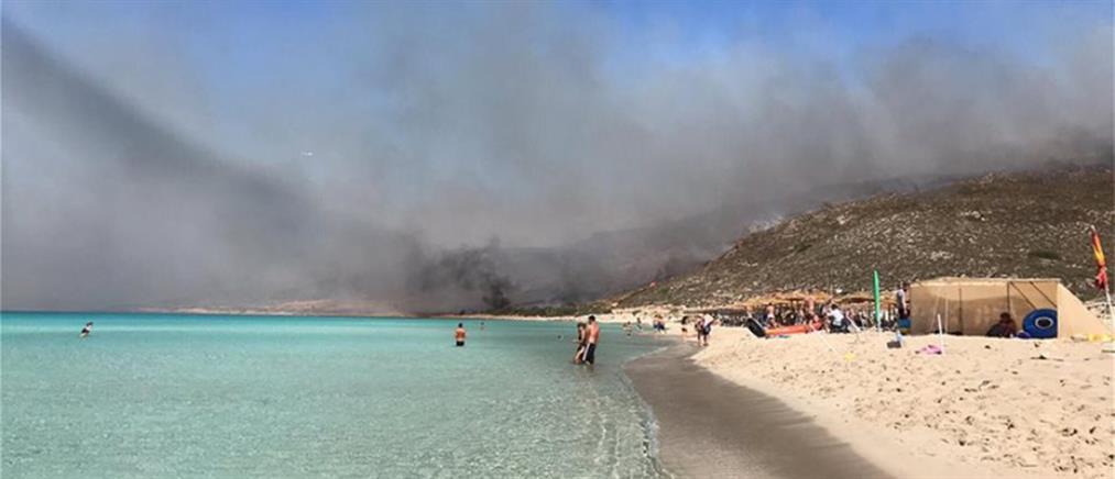 Υπό έλεγχο οι φωτιές στην Ελαφόνησο (βίντεο)