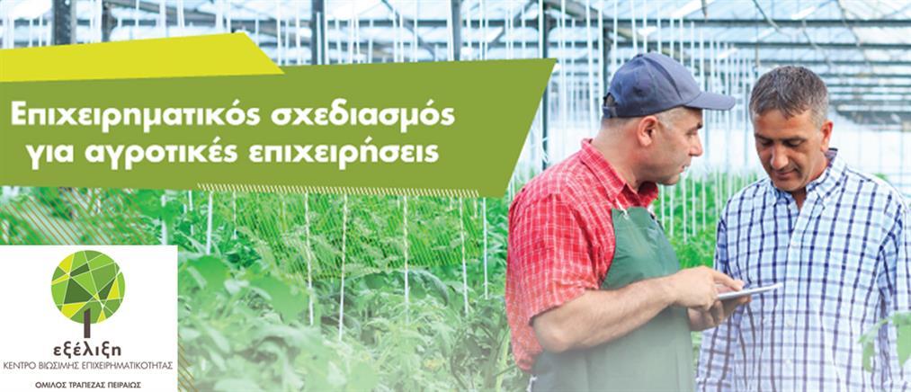 """""""Επιχειρηματικός Σχεδιασμός για αγροτικές επιχειρήσεις"""" από την Τράπεζα Πειραιώς"""