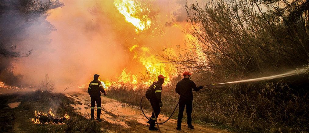 Πολιτική Προστασία: Πολύ υψηλός ο κίνδυνος πυρκαγιάς (βίντεο)