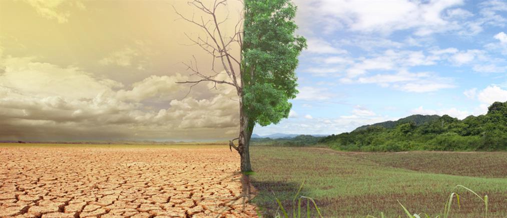"""""""Παρασκευές για το Μέλλον"""": διαδηλώσεις σε όλον τον κόσμο για την κλιματική αλλαγή"""
