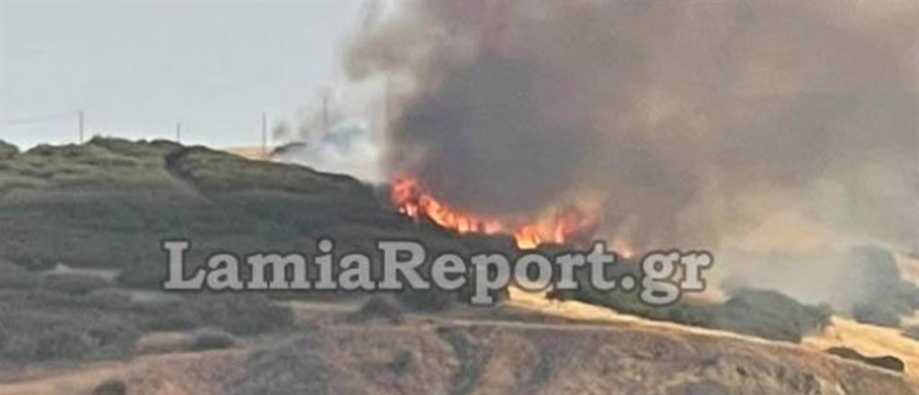Φωτιά στα Καλύβια (εικόνες)