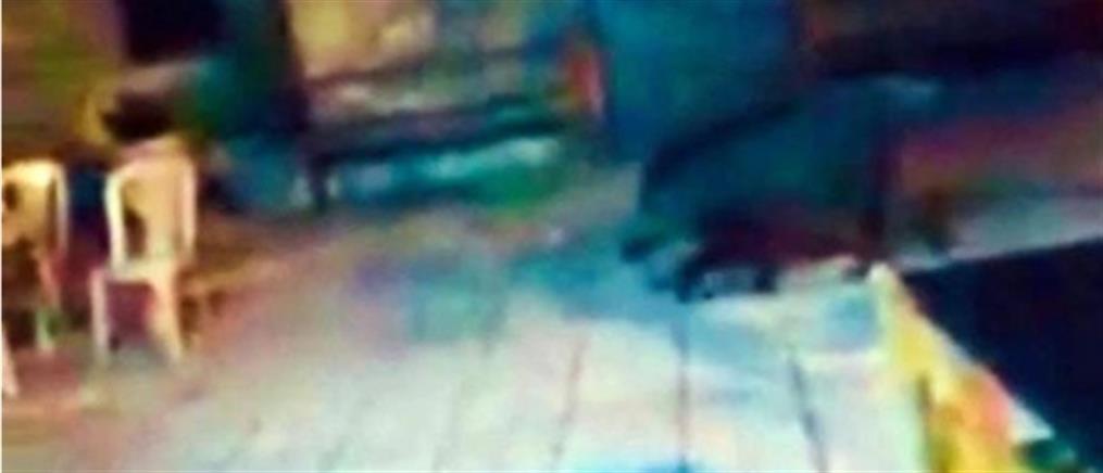 Φθιώτιδα: Αγριογούρουνο κόβει βόλτες στην πλατεία του χωριού (εικόνες)