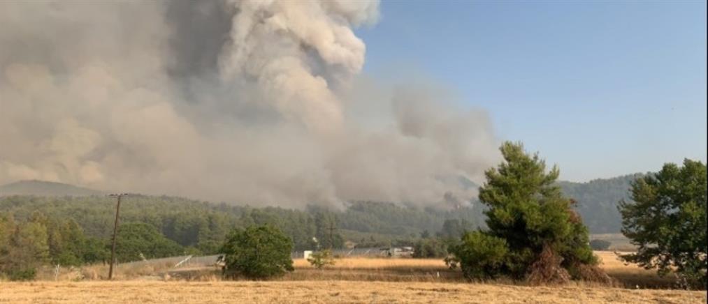 Φωτιά στην Ηλεία - Φαρμάκης: αντιπυρική ζώνη στην Αρχαία Ολυμπία
