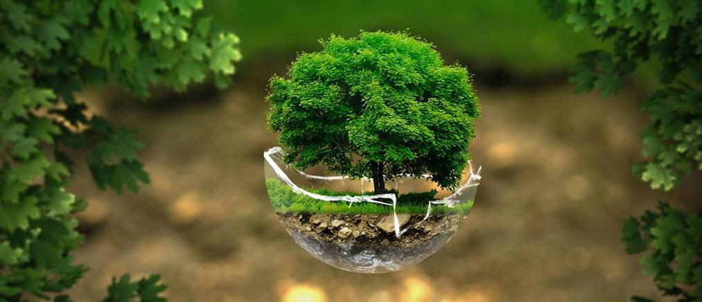 Κατερίνα Σακελλαροπούλου: Συνεργασία για την προστασία του περιβάλλοντος