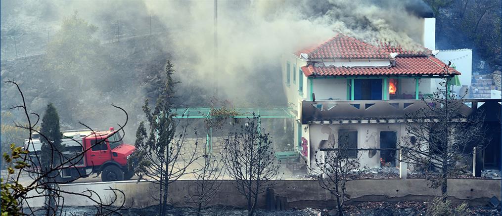 Φωτιές: Ξεκίνησε η καταγραφή των ζημιών σε Αρκαδία, Λακωνία και Μεσσηνία