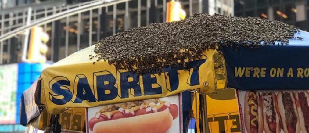 Γέμισε μέλισσες η Times Square! (εικόνες)