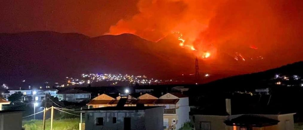 Φωτιά στη Φωκίδα: Εφιαλτική νύχτα, εκκένωση χωριών (εικόνες)
