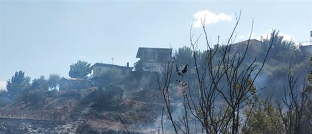 Νεκρός σε δασική πυρκαγιά στην Ανδρίτσαινα