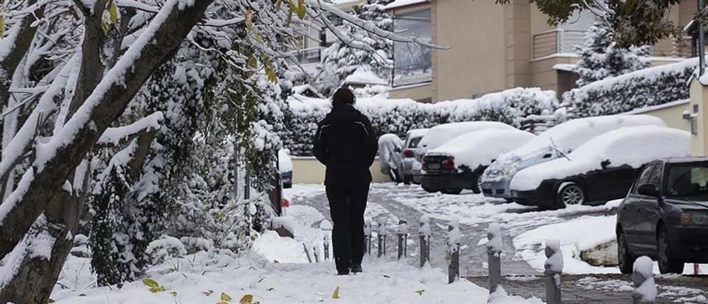 Στα λευκά η Βόρεια Ελλάδα: Έπεσαν τα πρώτα χιόνια (εικόνες)