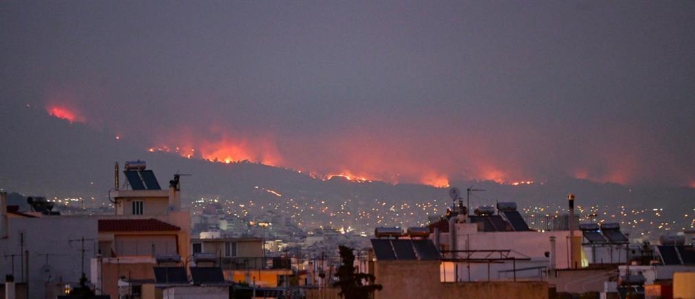 Φωτιές: εισαγγελική έρευνα προς κάθε κατεύθυνση