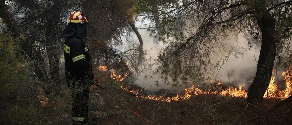 Φωτιές σε Κορινθία και Λακωνία
