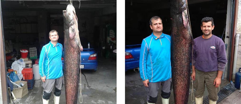Έπιασε ψάρι 84 κιλών! (φωτο)