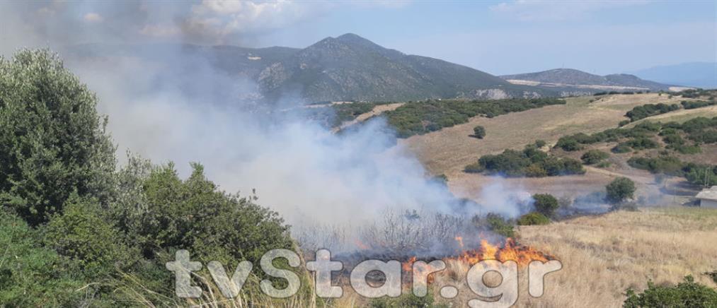 Φωτιά στην Καμηλόβρυση