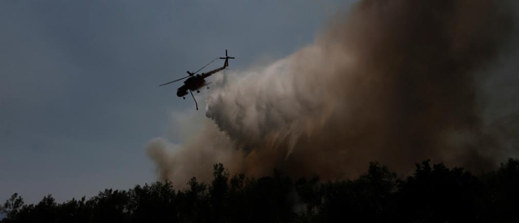 Πυρκαγιά στη Σπάρτη
