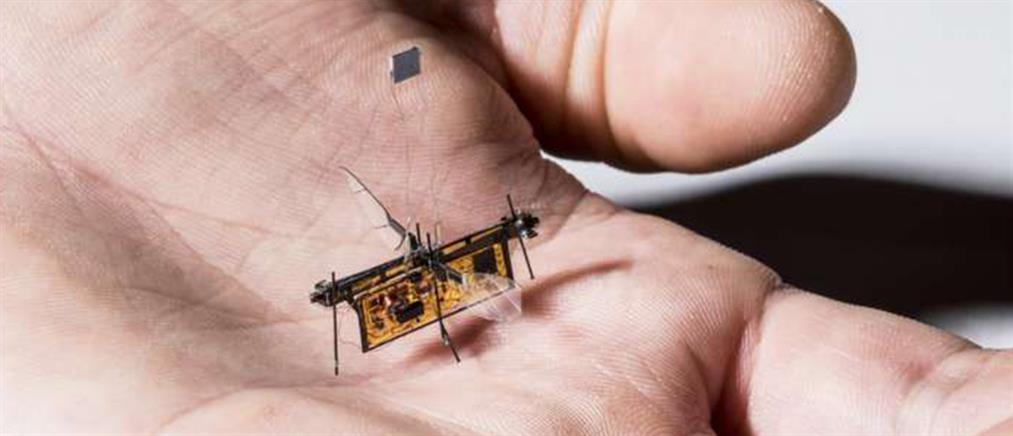 Αυτό είναι το πρώτο ρομπότ - έντομο (βίντεο)