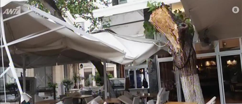 Λαχτάρησαν Πάιατ και Μενέντεζ: Δέντρο κατέρρευσε στο εστιατόριο που δειπνούσαν