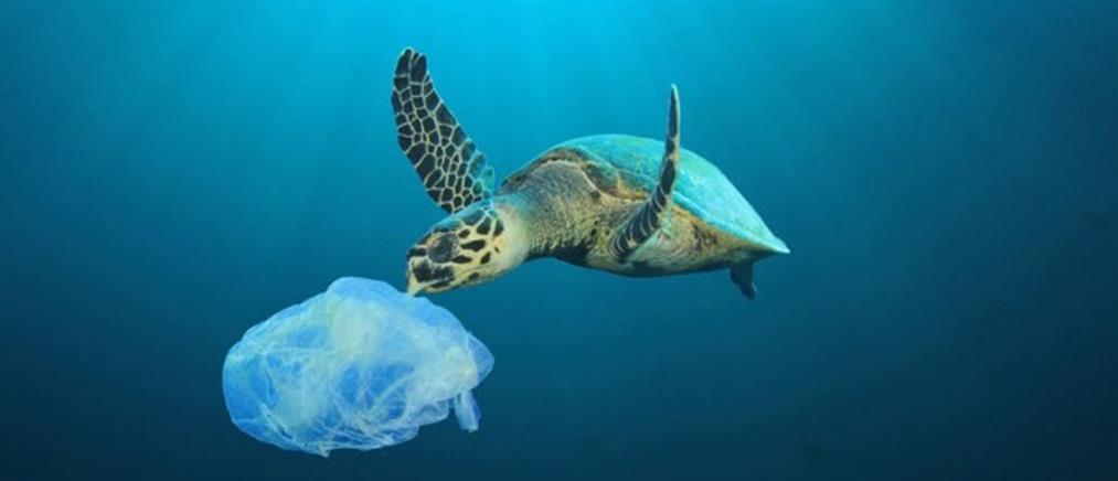 Πλαστική σακούλα: Μειώθηκε η ποσότητα, αλλά όχι η εξάρτηση