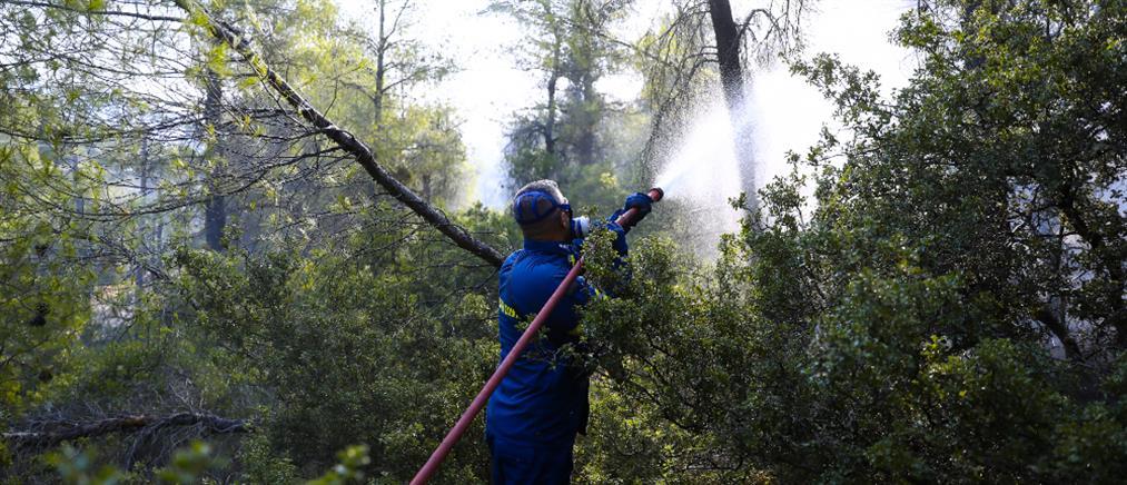 Άμφισσα: Φωτιά στο Κρόκι