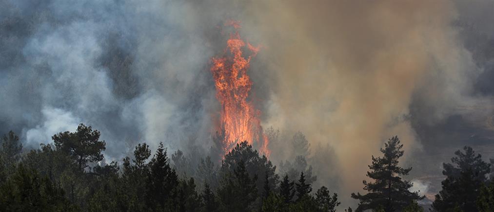 Φωτιές στην Τουρκία: Καίγεται ο θερμοηλεκτρικός σταθμός του Μίλας (βίντεο)