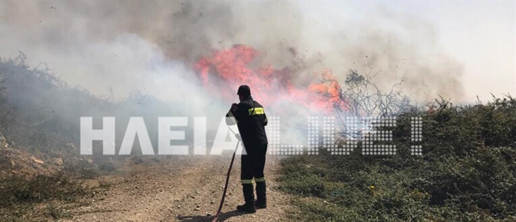 Στις φλόγες η Ηλεία (βίντεο)