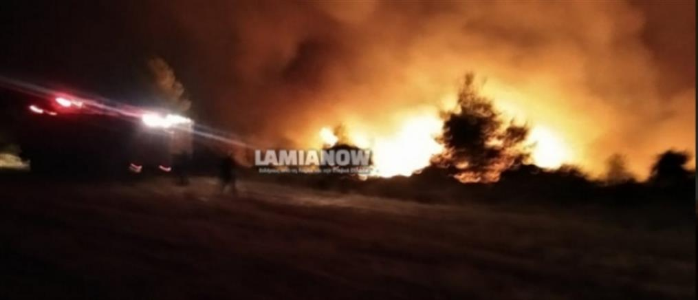 Φωτιά στο Μαρτίνο