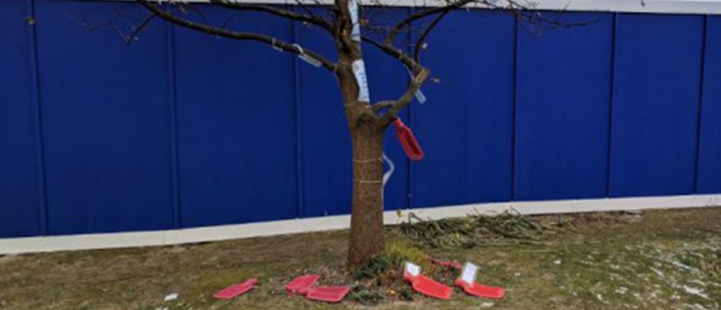 Στη Βρετανία κρεμούν θερμοφόρες στα… δέντρα