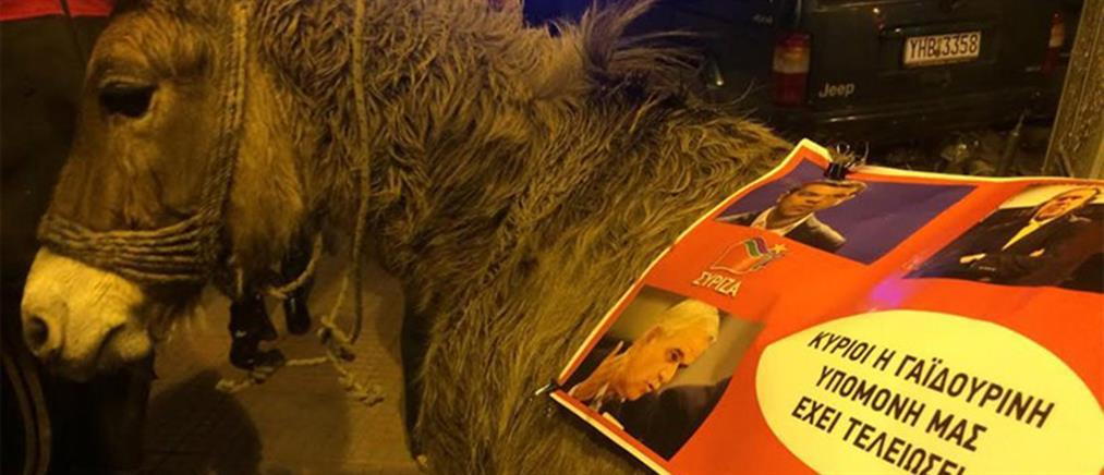 Διαδηλωτές προσπάθησαν να αφήσουν στη Βουλή έναν… γάιδαρο! (βίντεο)