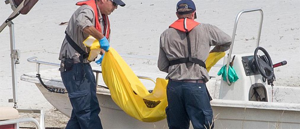 Νεκρός ο αλιγάτορας που σκότωσε τον δίχρονο στο Ορλάντο(φωτο)