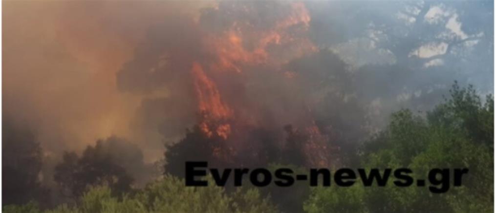 Μεγάλη φωτιά στον Έβρο - Εκκενώθηκε η Λευκίμη