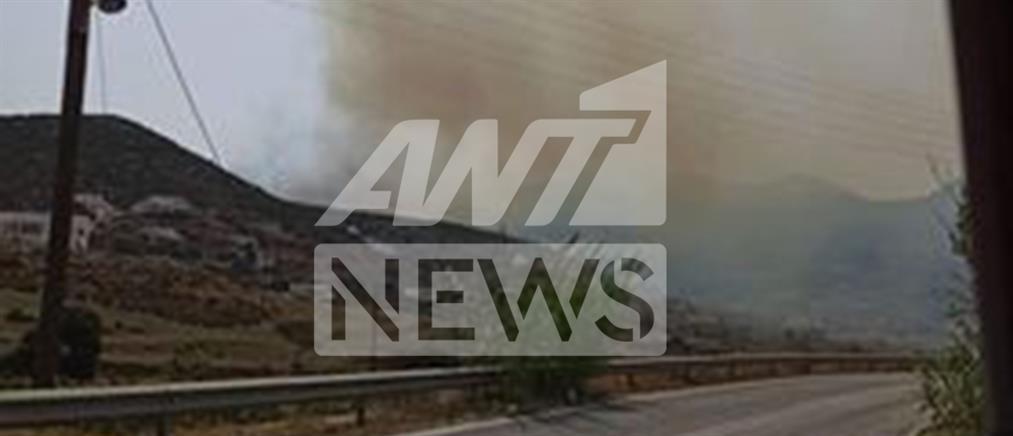 Φωτιά στην Πάρο (εικόνες)