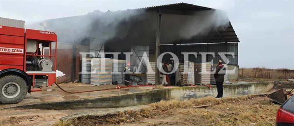 Φωτιά σε αποθήκη υαλικών (εικόνες)
