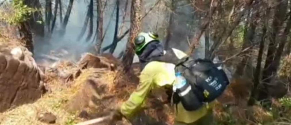 Φωτιές στην Ισπανία: εκκένωση ακόμη δύο πόλεων (βίντεο)