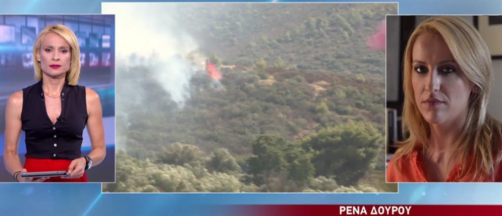 Δούρου στον ΑΝΤ1: εξετάζεται το ενδεχόμενο η φωτιά στον Μαραθώνα να ξεκίνησε από εξωτερική εργασία (βίντεο)