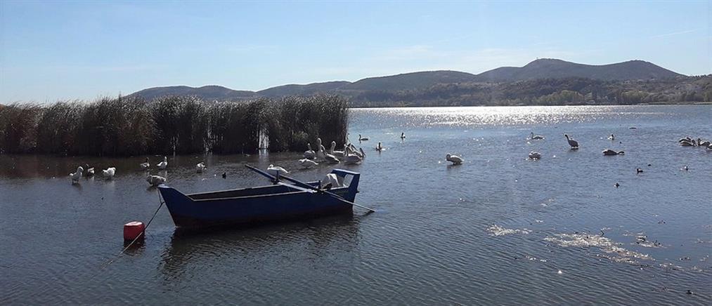 Μαζική δολοφονία νεαρών κοντά σε λίμνη