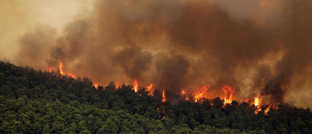 Φωτιές: Πολύ υψηλός κίνδυνος σε τρεις περιφέρειες (χάρτης)