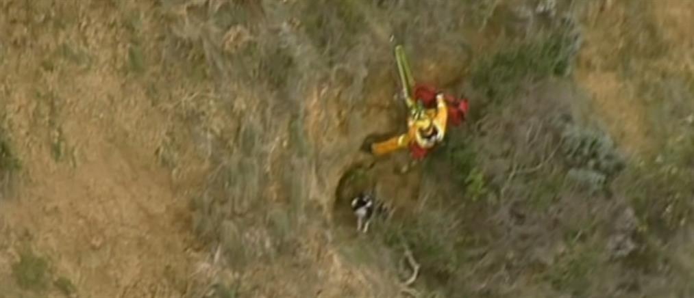 Επιχείρηση διάσωσης σκύλου από χαράδρα 15 μέτρων (βίντεο)