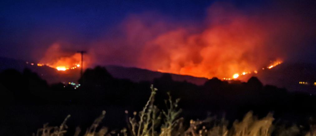 Φωτιά στο Μαρόκο: στάχτη 2000 στρέμματα δασικών εκτάσεων