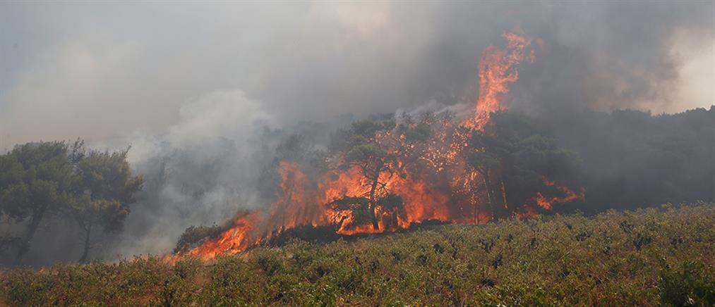 Φωτιά στην Κερατέα: Ορατός από το διάστημα ο καπνός (εικόνες)
