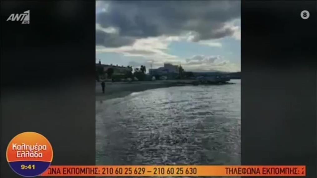 Επεισόδια για τους αμμοκράτες στη Χαλκιδική