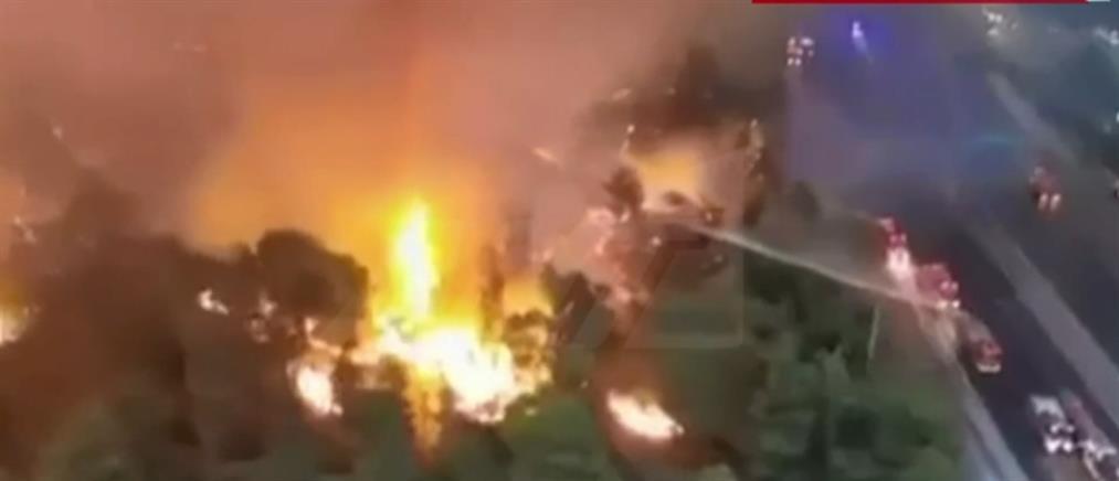 Φωτιά στην Αττική: βίντεο - ντοκουμέντο από ελικόπτερο