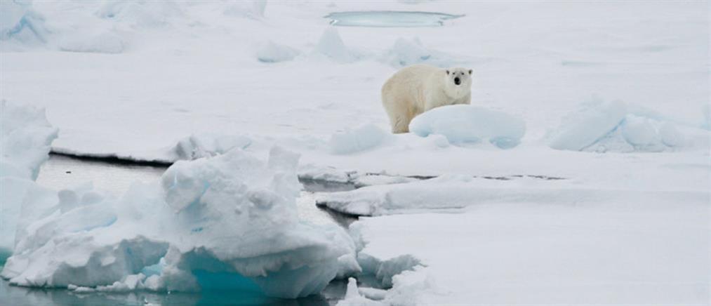 Ρεκόρ ζέστης καταγράφηκε στη Νορβηγία