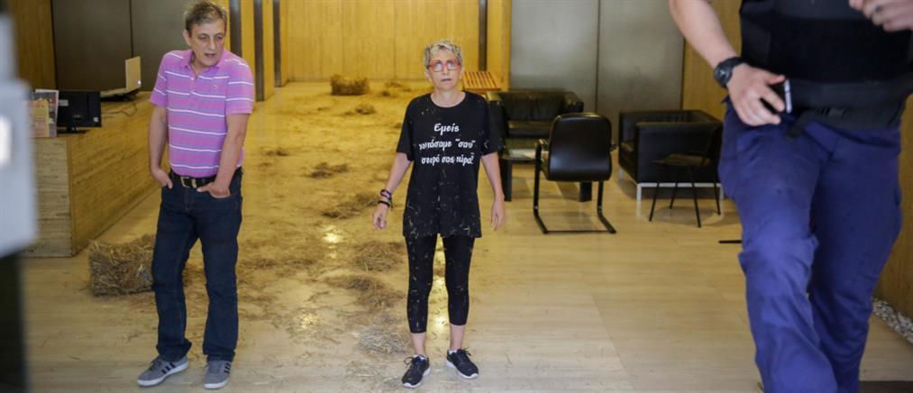 Επίθεση με… σανό στα γραφεία των ΑΝΕΛ (εικόνες)