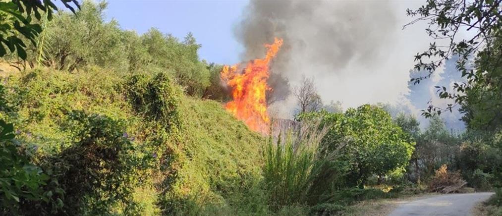 Ζάκυνθος: Προσαγωγή για την πυρκαγιά στο Αργάσι
