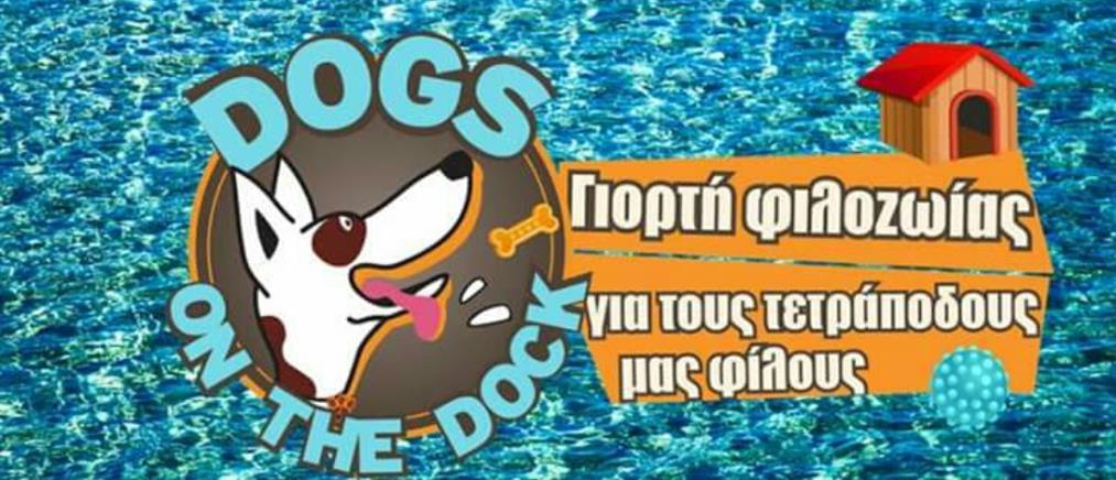 Το Facebook των... σκύλων!