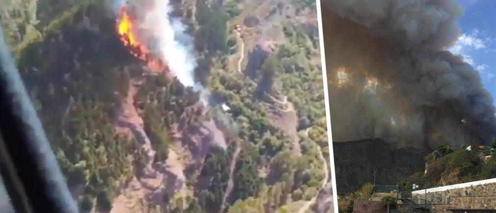 Νέα πυρκαγιά στα Κανάρια Νησιά: εκκενώνεται πολυτελές ξενοδοχείο (βίντεο)