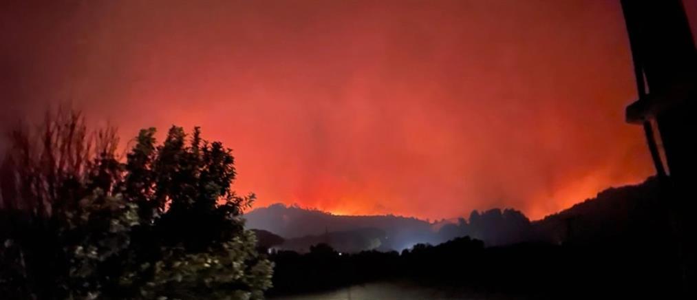 Φωτιές: Νύχτα τρόμου σε Ηλεία, Εύβοια και Μεσσηνία (εικόνες)